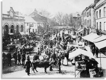 High Street, Newtown